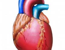 Аритмія серця
