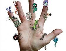Які мікроби живуть на руках
